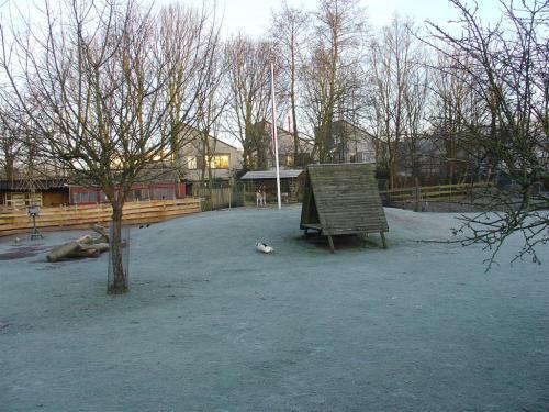 Kinderboerderij winter 001