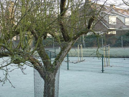 Kinderboerderij winter 003