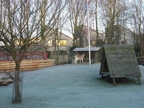 Kinderboerderij winter 005